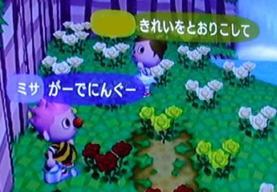 blog20121028g.jpg
