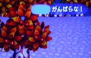 blog20121028k.jpg