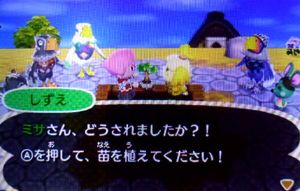 blog20121118k.jpg