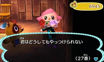 blog20121121y.jpg