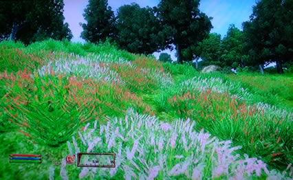 blog20121219b.jpg