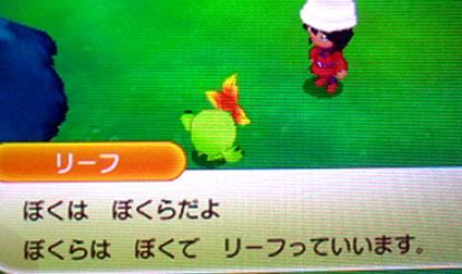 blog20130112o.jpg