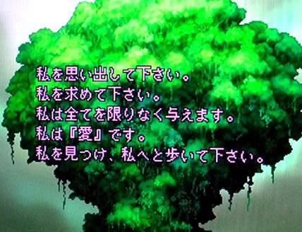 blog20130113f.jpg