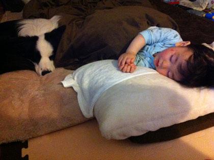 ぶぅ兄添い寝