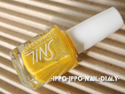 TiNS 063①
