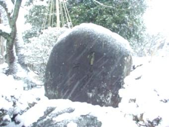 小丸山公園にある茶谷竜杖の句碑