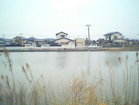 shinnsai2011050103no11