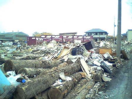 shinnsai2011052108no19