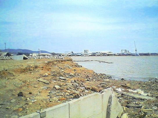 shinnsai2011052907no22