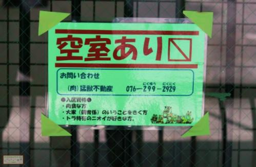 猛獣不動産(富山市ファミリーパーク)