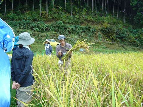 2011年10月22日大北農園自然農塾 (2)