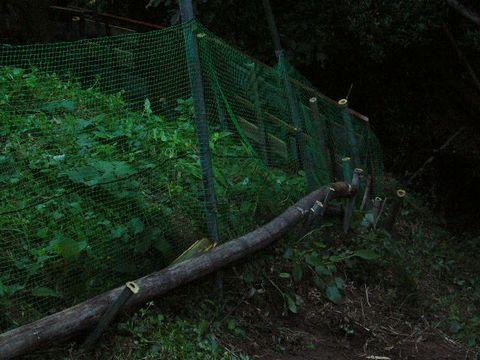 2011年11月22日イノシシ除けのフェンス (1)