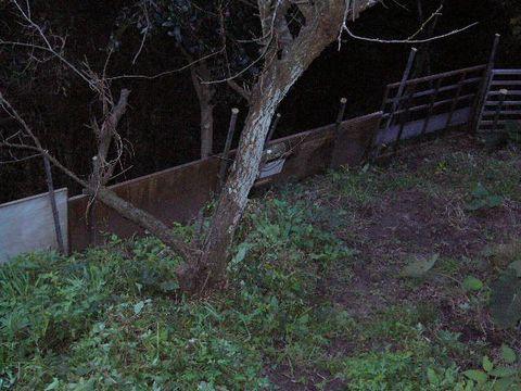 2011年11月22日イノシシ除けのフェンス (3)
