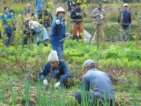 2011年12月4日赤目自然農塾 (10)