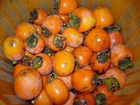 2011年12月7日干し柿 (2)