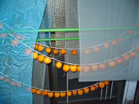 2011年12月7日干し柿 (1)