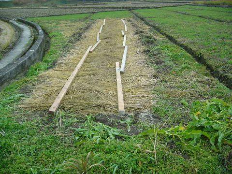 2012年12月15日苗床の準備 (17)