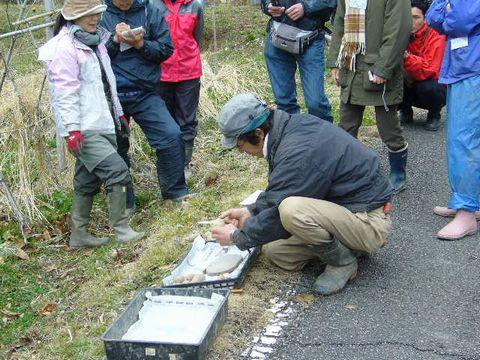 2012年3月24日大北農園 (2)