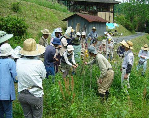 2012年5月19日大北農園 (2)
