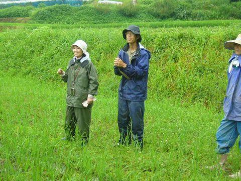 2012年7月14日大北農園 (1)