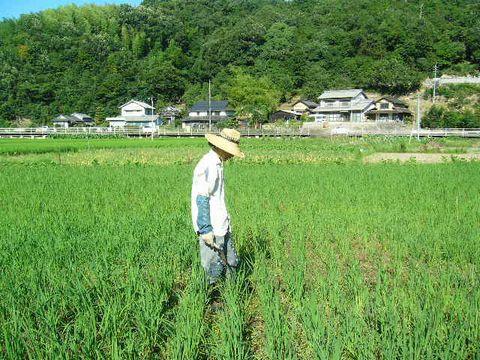 2012年8月4日たつみや勉強会 (1)