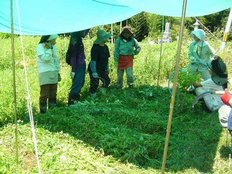 2012年8月4日大北農園 (1)