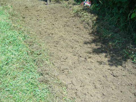 2012年8月19日蕎麦の播種 (3)