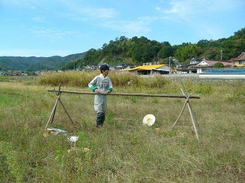 2012年10月13日陸稲稲刈り (1)