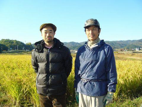 2012年11月2日稲刈り (2)