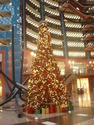 Tree 3-1