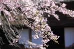 弘法大師堂2