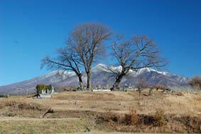 富士山とお墓2