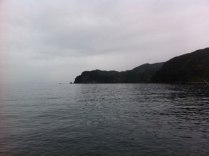 2012721-02.jpg