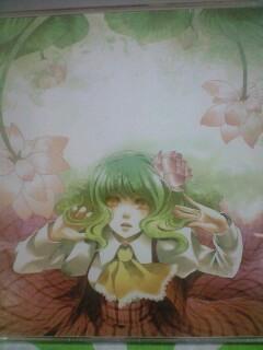 The Lotus 発熱巫女~ず