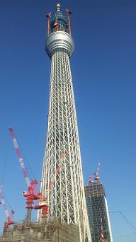 2011111.jpg