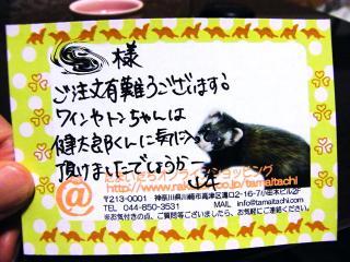 健太郎のご飯1004-12