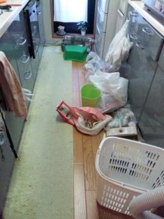 キッチン床×