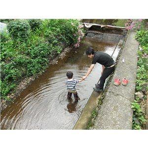 川 川遊び 河 河遊び 水遊び