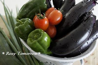 お庭のお野菜たち2014