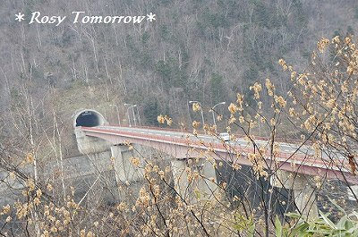 トンネルに抜ける橋