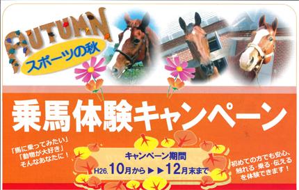 ヘレナ秋の乗馬体験TOP
