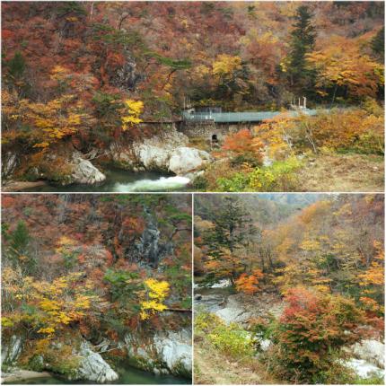夏井川渓谷「紅葉ウォーキングフェスタ」2