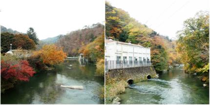 夏井川渓谷「紅葉ウォーキングフェスタ」5