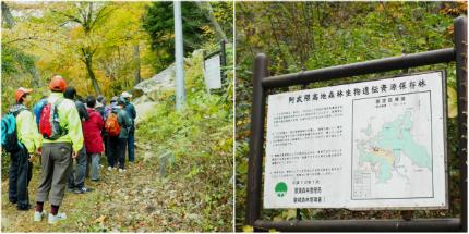 夏井川渓谷「紅葉ウォーキングフェスタ」6