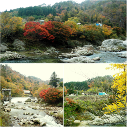 夏井川渓谷「紅葉ウォーキングフェスタ」7