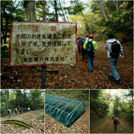 夏井川渓谷「紅葉ウォーキングフェスタ」10