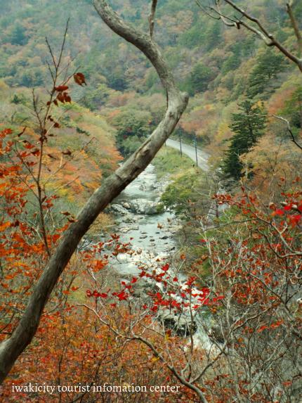 夏井川渓谷「紅葉ウォーキングフェスタ」11