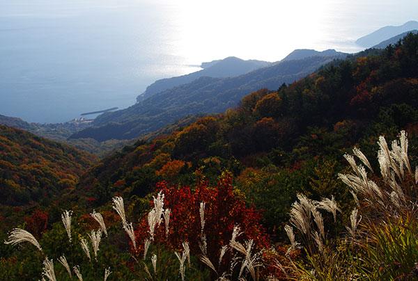 寒霞渓から瀬戸内海