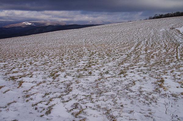 初冬の寺沢高原