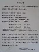 Image1_01_20111012175407.jpg